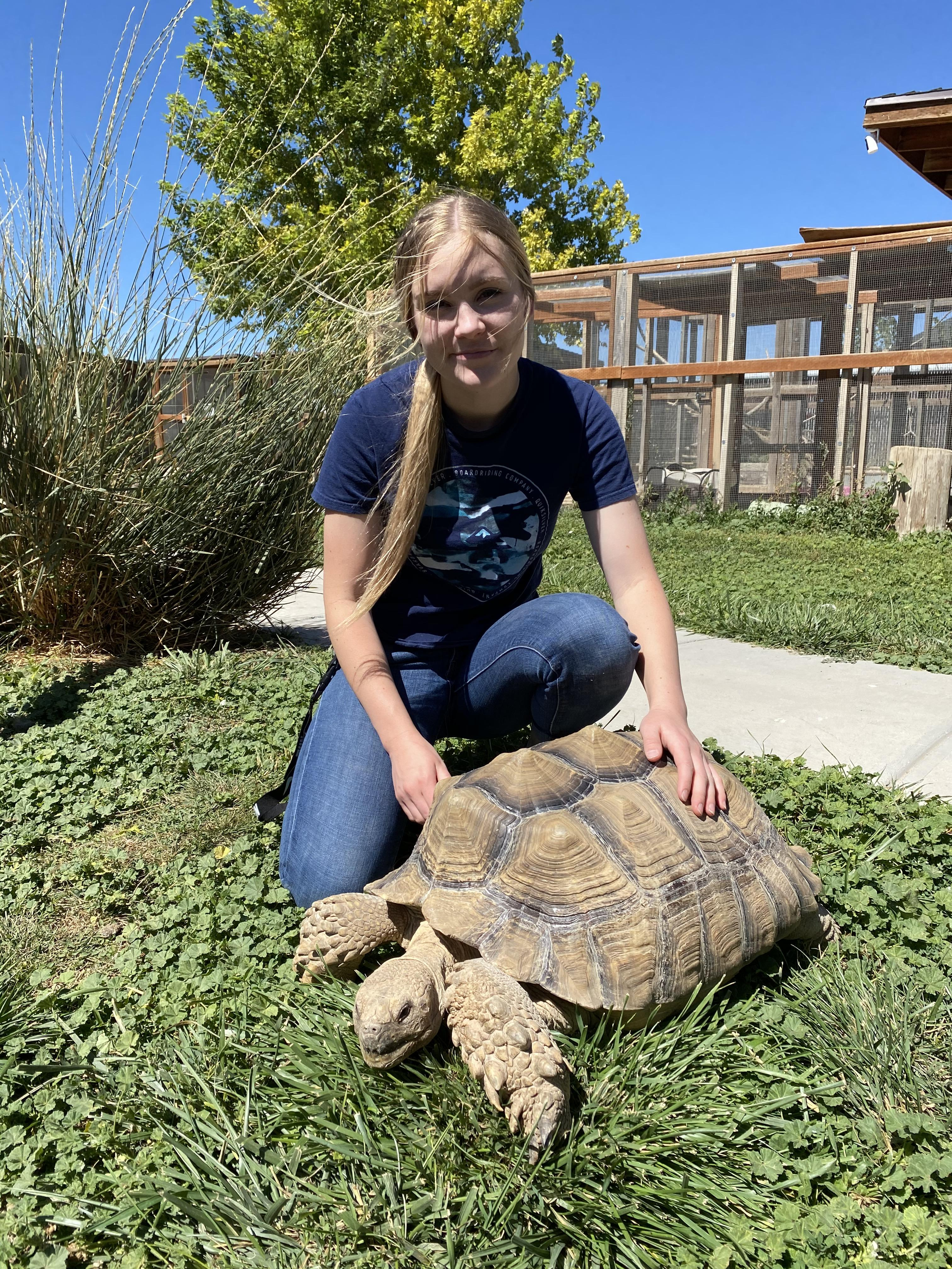 Alaina with a tortoise at Wild Wonders